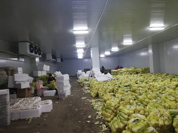 个人蔬菜冷库